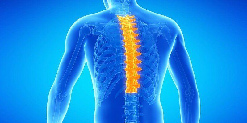 Ортопедическое заболевание – остеохондроз грудного отдела позвоночника: симптомы и лечение, позволяющее достичь ремиссии