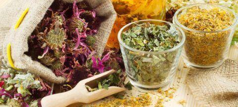 Многие пытаются лечить травами болезни суставов.