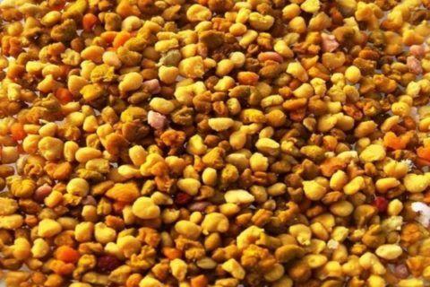 Перга – известный иммуностимулирующий натуральный продукт.