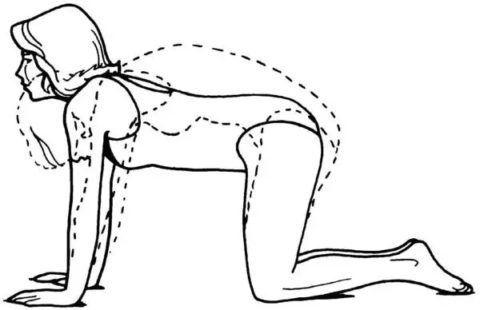 Упражнения в коленно-кистевом упоре также тренируют вестибулярный аппарат