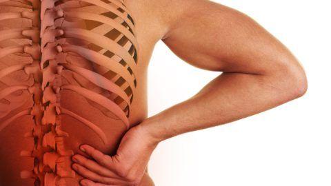 Боль в позвоночнике может быть вызвана поражением мышц, связок, костей