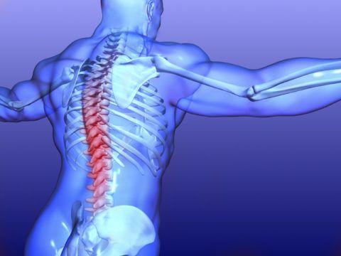 Дорсалгией называют болевой синдром, локализованный в позвоночнике