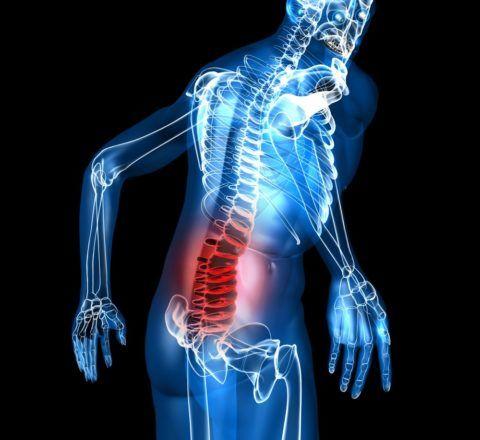 Ограничение трудоспособности часто происходит по причине боли внизу спины