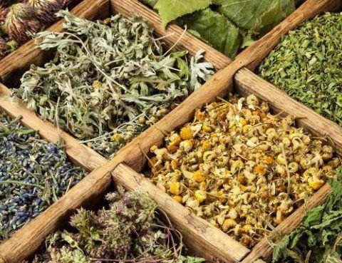 Сушить травы могут помочь при болях в суставах или патологиях позвоночника