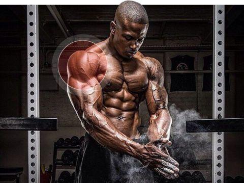 Массаж плеча: как делать массаж плечевого сустава