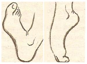 «Насос» для ног