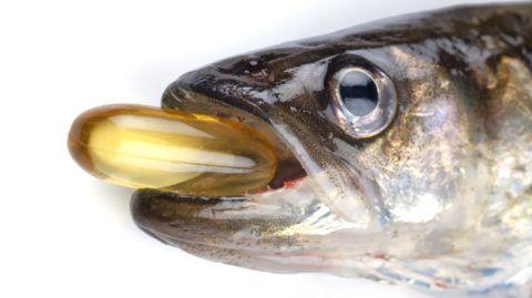 Рыбий жир способствует восстановлению поврежденных тканей суставов.