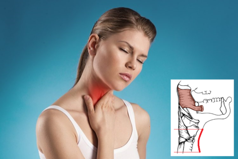 При хондрозе разрушающийся МПД сдавливает сосуды и нервы