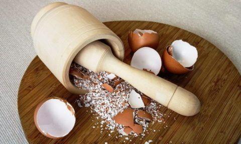 Процесс измельчения яичной скорлупы