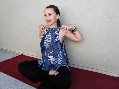 На фото техника движения плечевыми суставами