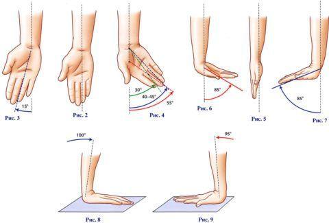 Амплитуда нормального движения кисти. Отклонения в градусе могут привести к травме.
