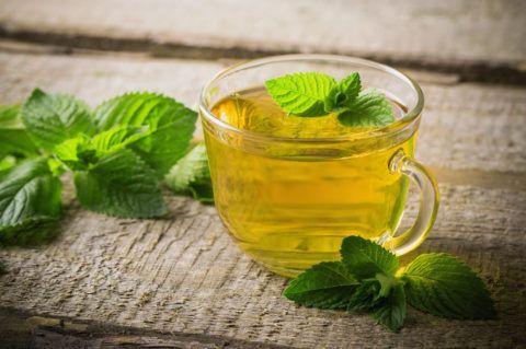 Чай из мяты отлично тонизирует, снимает боль, повышает настроение и утоляет жажду.