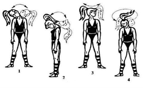 Гимнастику для мышц шеи и плеч нужно делать регулярно