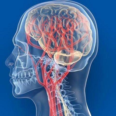 Наиболее тяжелым последствием является нарушение мозгового кровотока
