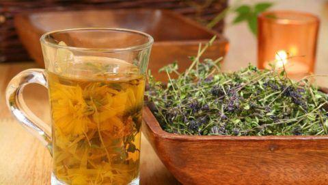Отвары лекарственных трав обладают массой пользы и приятными вкусовыми качествами.