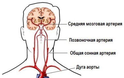 При заболевании нарушается питание нервной ткани