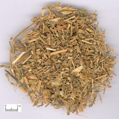 Растение в высушенном виде, применяемое для производства лекарственных средств.