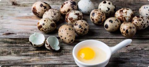 Скорлупа перепелиных яиц способствует укреплению как костной, так и хрящевой тканей.