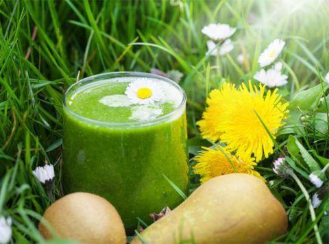 Справиться с болезнями суставов помогут свежевыжатые соки лекарственных растений.