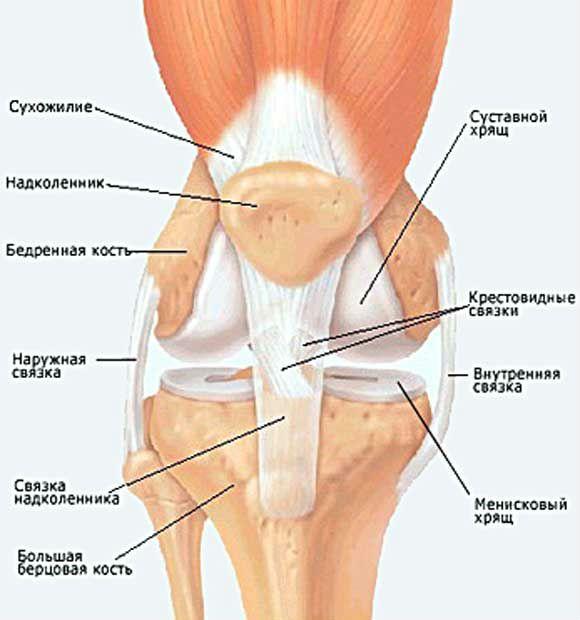 Операция на коленном суставе, виды хирургических вмешательств и способ их проведения