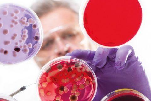 Перед назначением группы антибиотиков, необходимо сдать анализы и проверить организм пациента на наличие аллергической реакции.