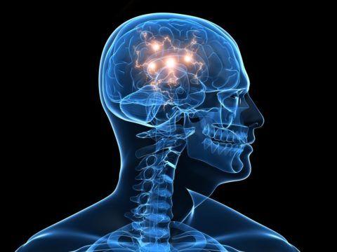 Прежде всего, страдает головной мозг
