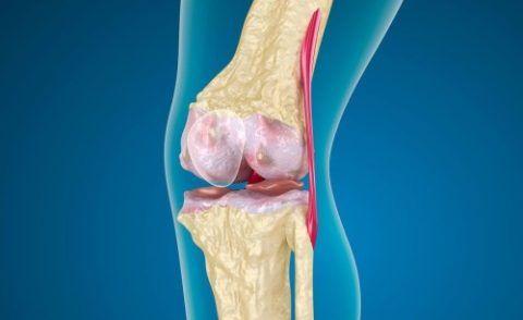 При контактном суставном остеомиелите первопричиной инфекционного процесса является близлежащий паточаг.