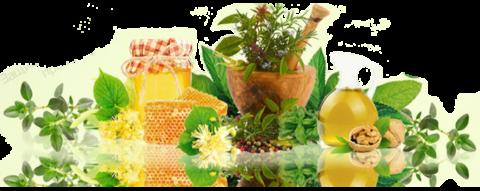 Растительное сырье – отличное подспорье для лечения грыжи шейного отдела.