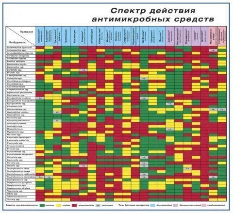 Спектр действия антимикробных средств. При длительном использовании антибиотиков, микробы вырабатывают устойчивость к ним.