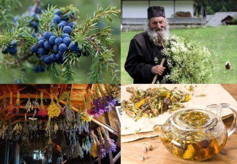 Впервые изготовили лечебный сбор монахи Соловецкого монастыря несколько веков назад.