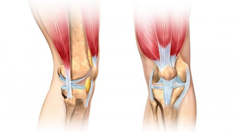 Лигаментоз суставов: симптомы, причины развития, методы лечения и профилактики