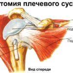 Внекапсульная резекция предполагает иссечение патологических участков костей сочленения и других тканей вне капсулы сустава.