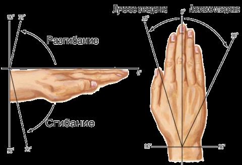 Изображение - Воспаление лучезапястного сустава лечение obem-dvizheniy-480x328