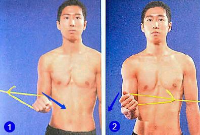 Изометрия мышц пронации и супинации