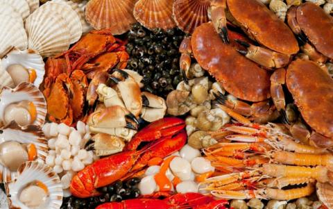 Глюкозамин – это производное хитина из панцирей крабов, креветок и раковин моллюсков