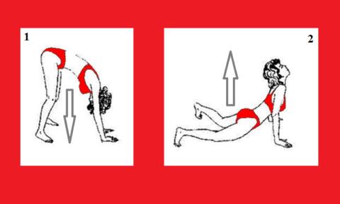 В положении 1 делайте глубокий вдох, а переходя в положении 2 – протяжный выдох