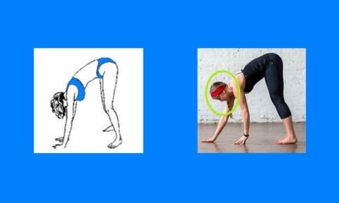 Комплекс упражнений для позвоночника поля брэгга thumbnail